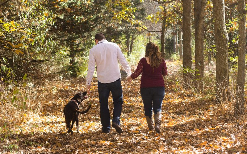 A couple walking their dog in the woods