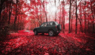 4x4 in an Autumn woodland area